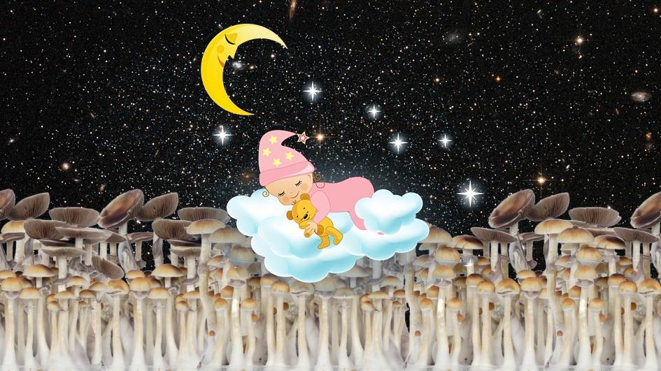 Sleeping on magic mushrooms
